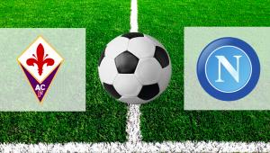 Фиорентина — Наполи. Прогноз на матч 9 февраля 2019. Чемпионат Италии